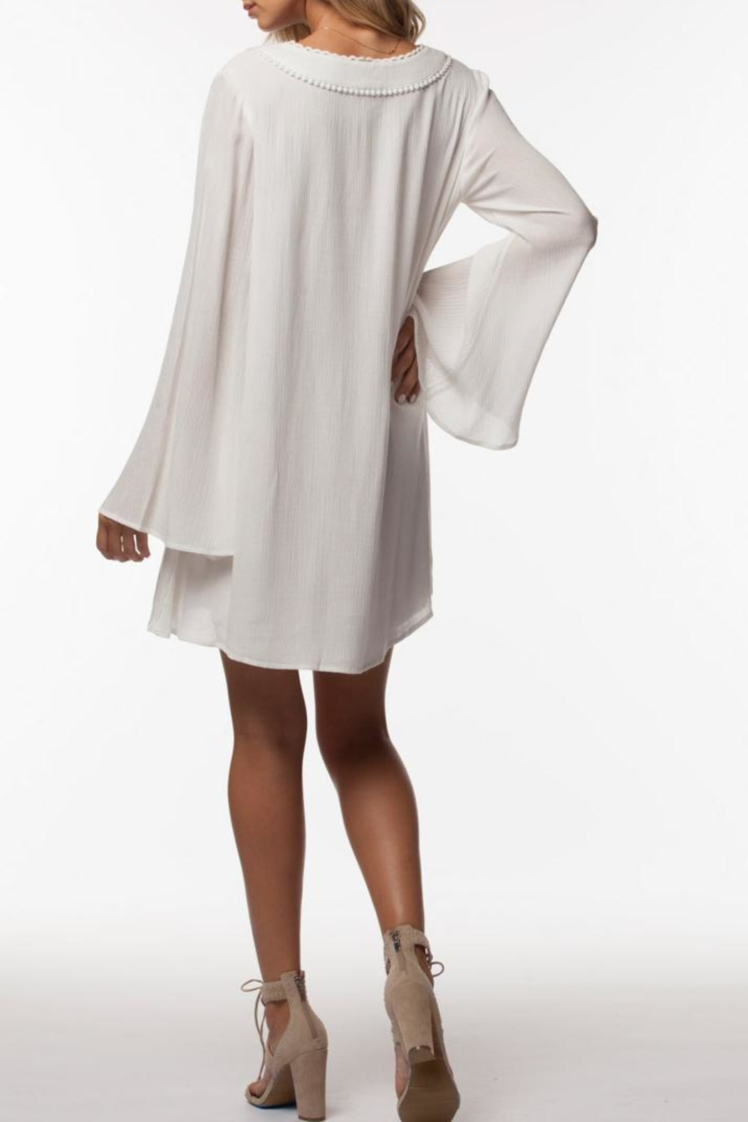 PPLA Clothing Cassius Dress - Front Full Image