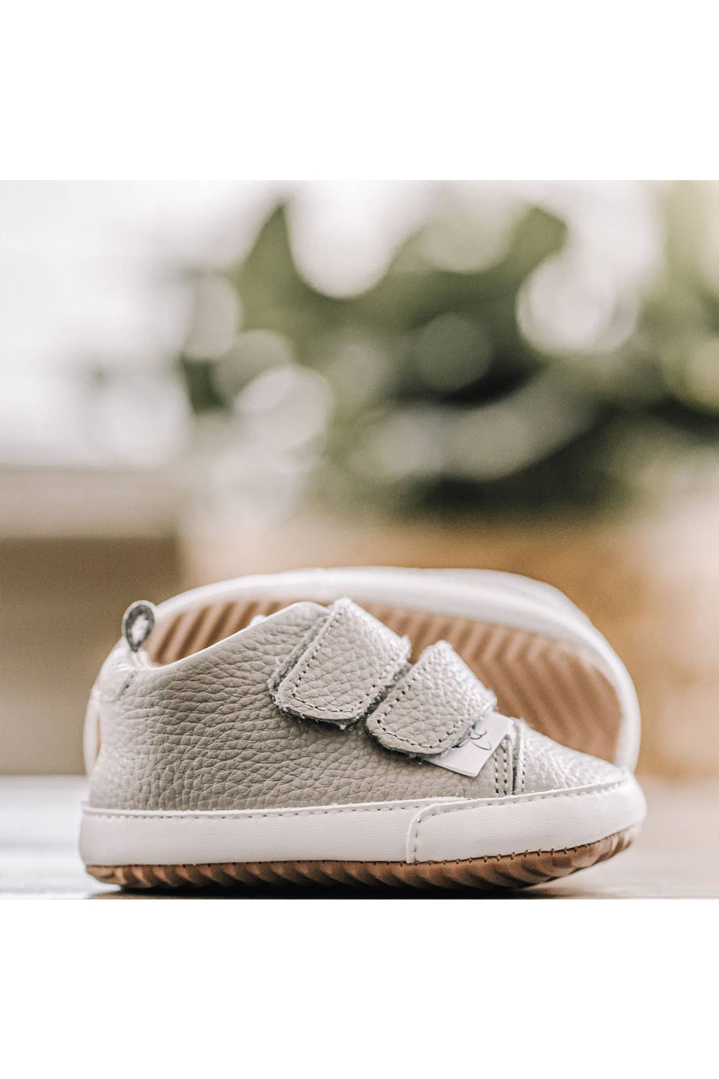 Little Love Bug Company Casual Grey Low Top Moccasin - Main Image