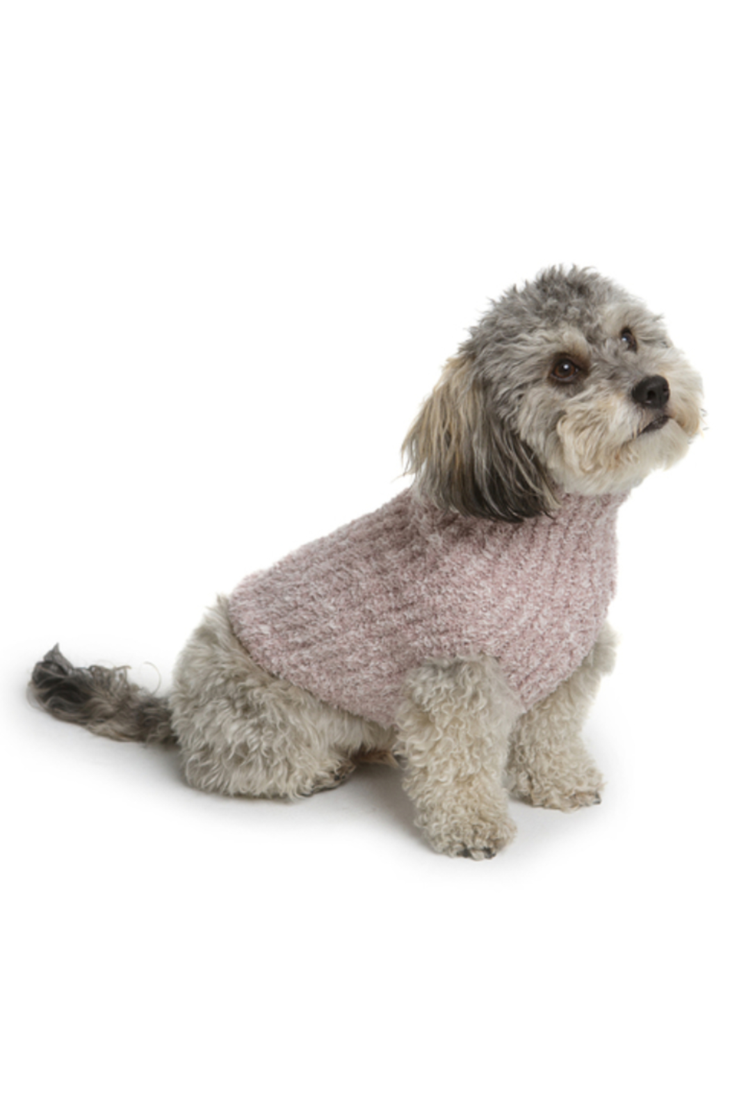 The Birds Nest CC RIBBED PET SWEATER - Main Image