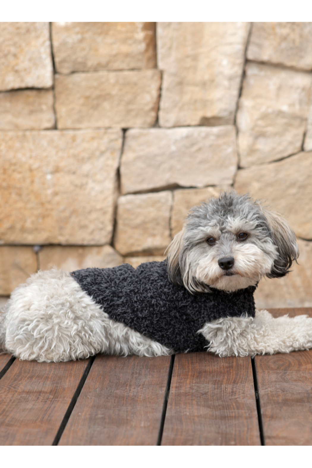 Barefoot Dreams CC RIBBED PET SWEATER - Front Cropped Image