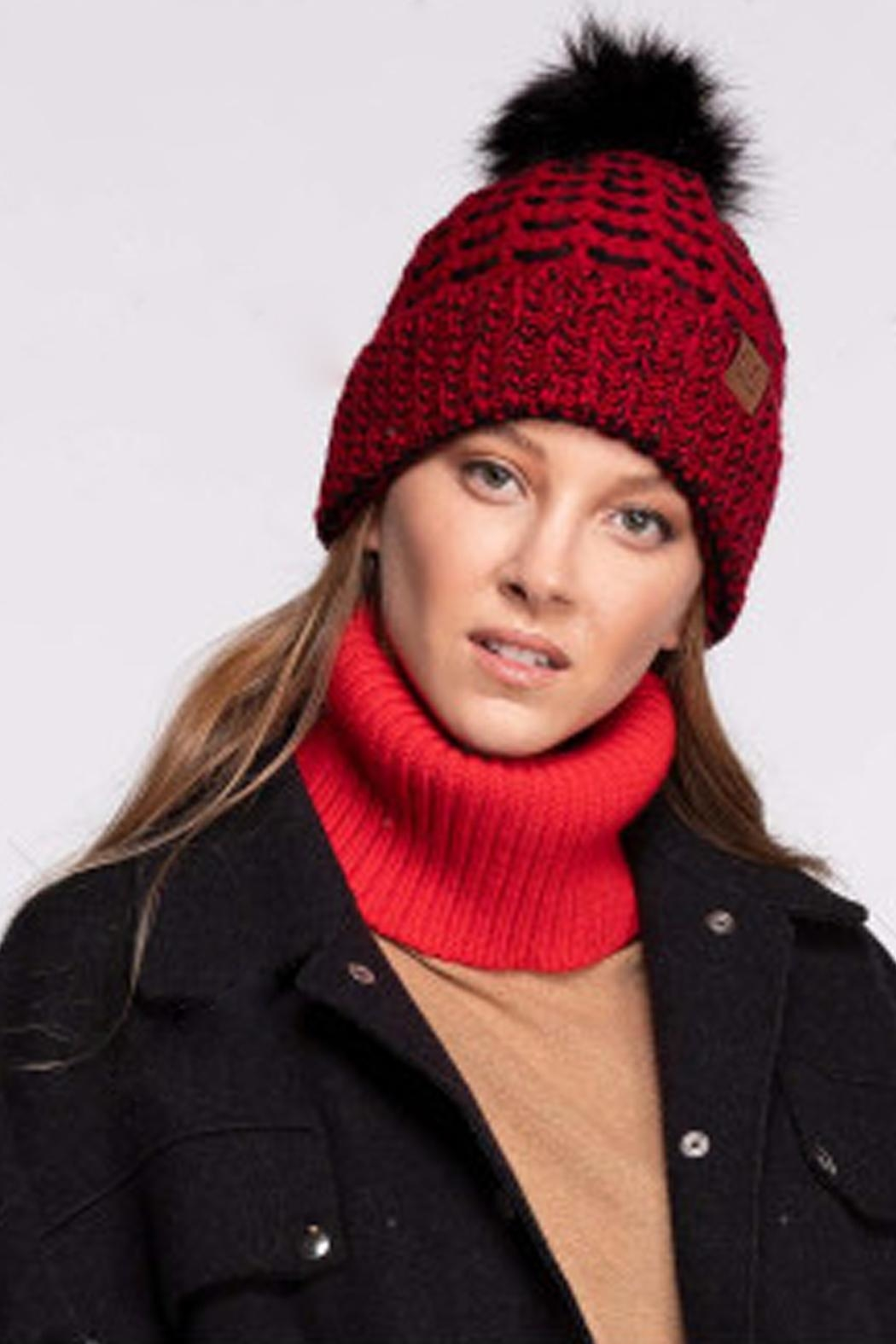 CC Beanie Red & Black Beanie - Front Cropped Image