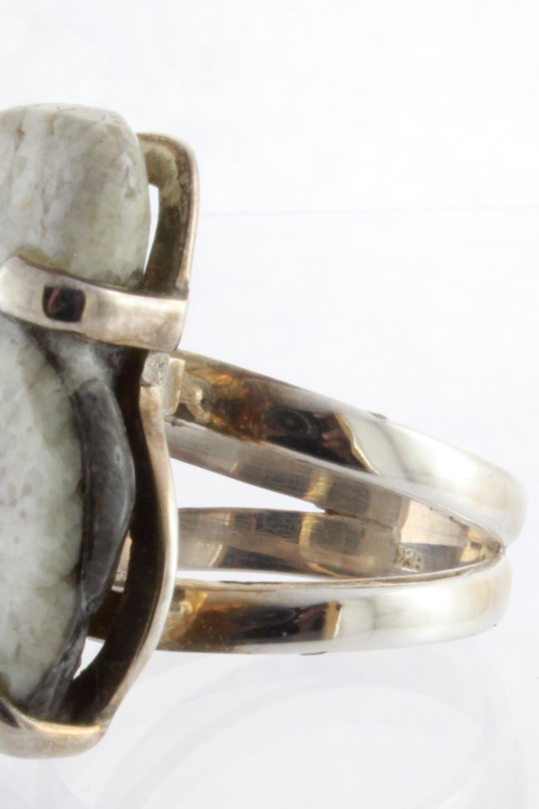 CDO  Ammonite Sterling Ring - Side Cropped Image