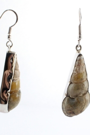 CDO  Fossil Shell Earrings - Front cropped