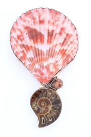 CDO  Shell Ammonite Pendant - Product Mini Image