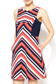 Trina Turk Upcoming Dress - Front cropped