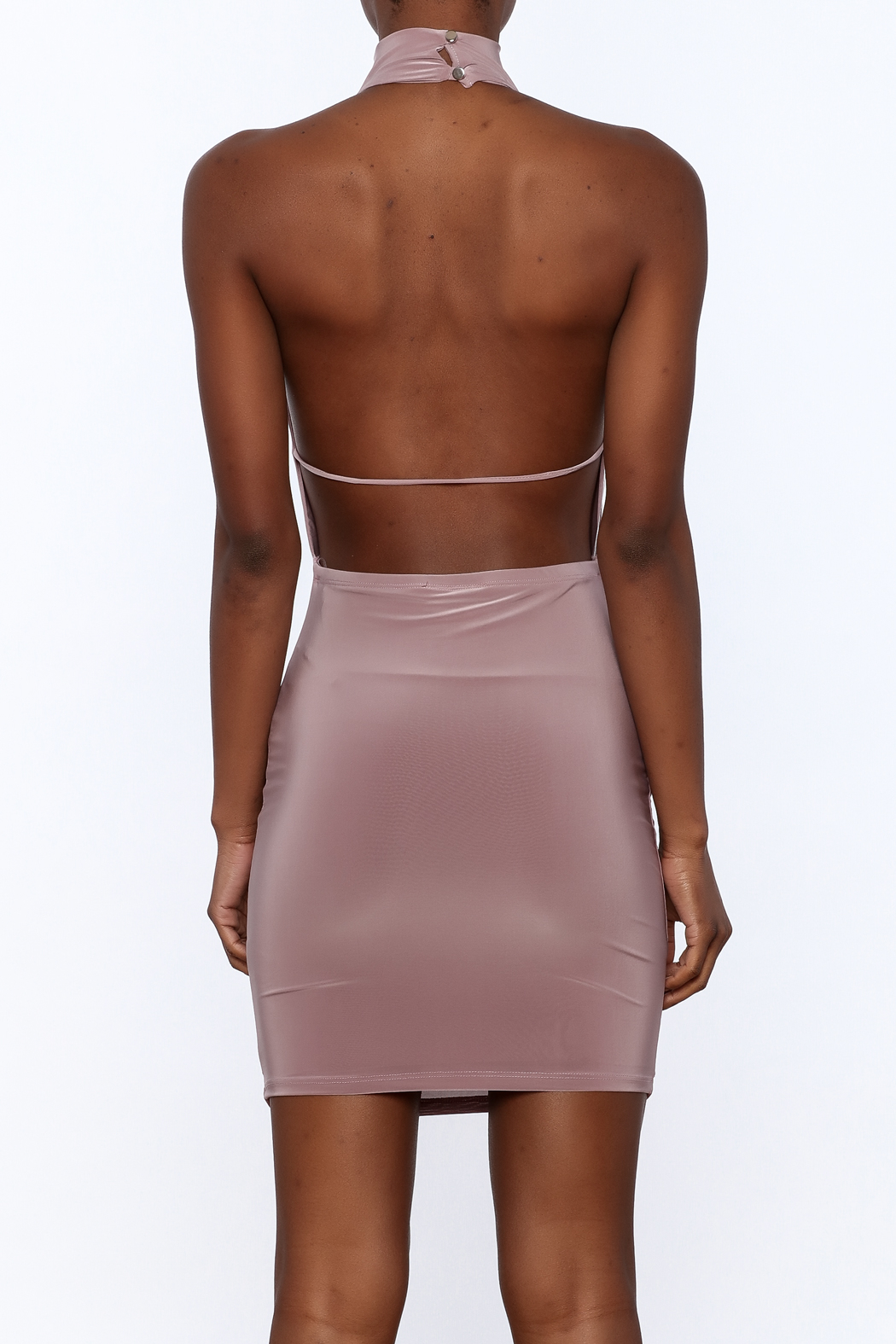 Cefian Mauve Bodycon Dress - Back Cropped Image