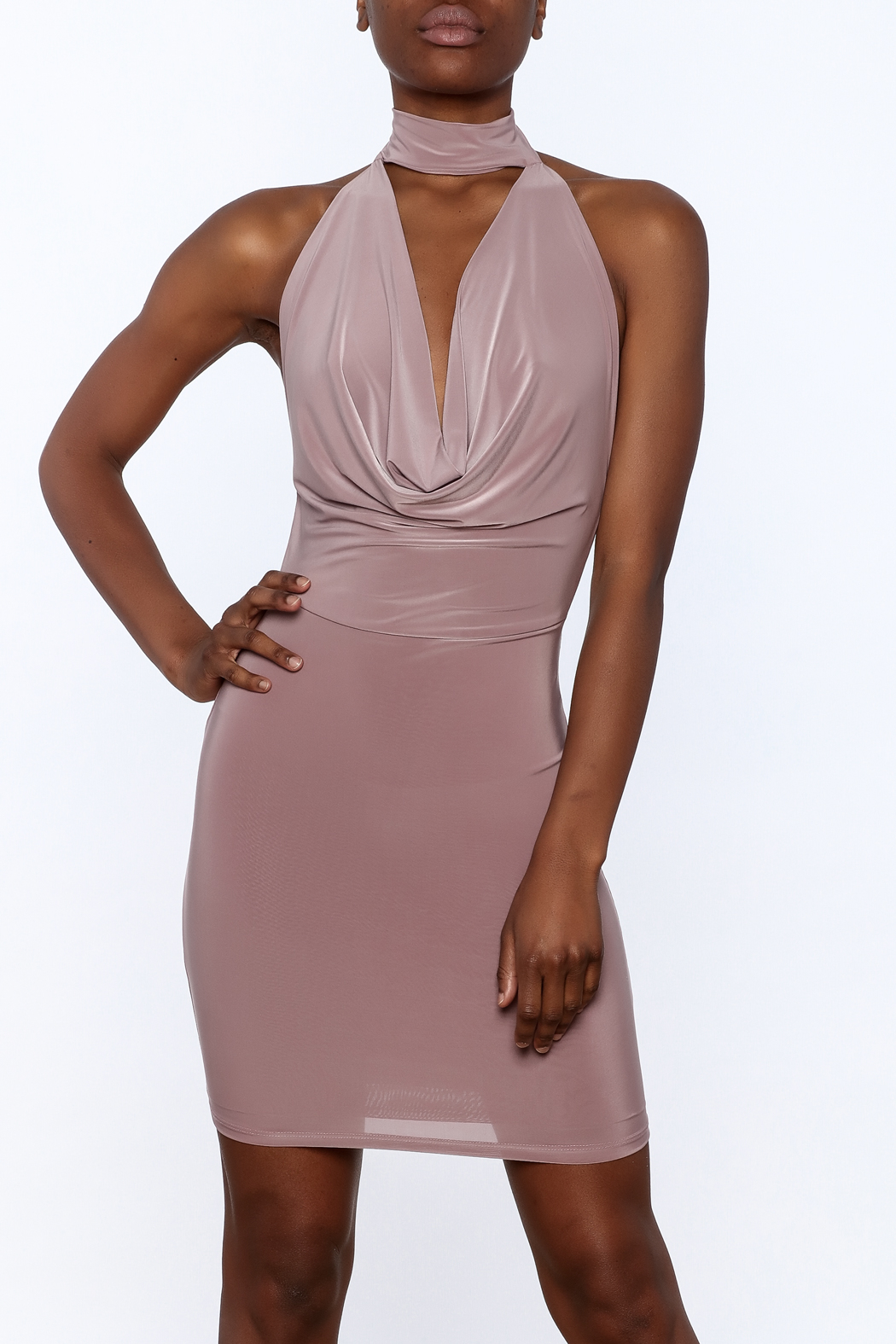 Cefian Mauve Bodycon Dress - Front Cropped Image