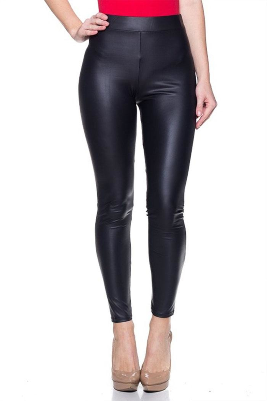 Cemi Ceri Matte Leather Legging - Front Cropped Image