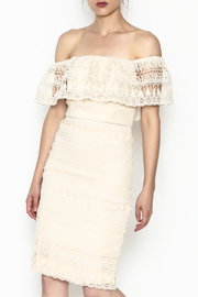 Champagne & Strawberry Cream Lace Dress - Front cropped