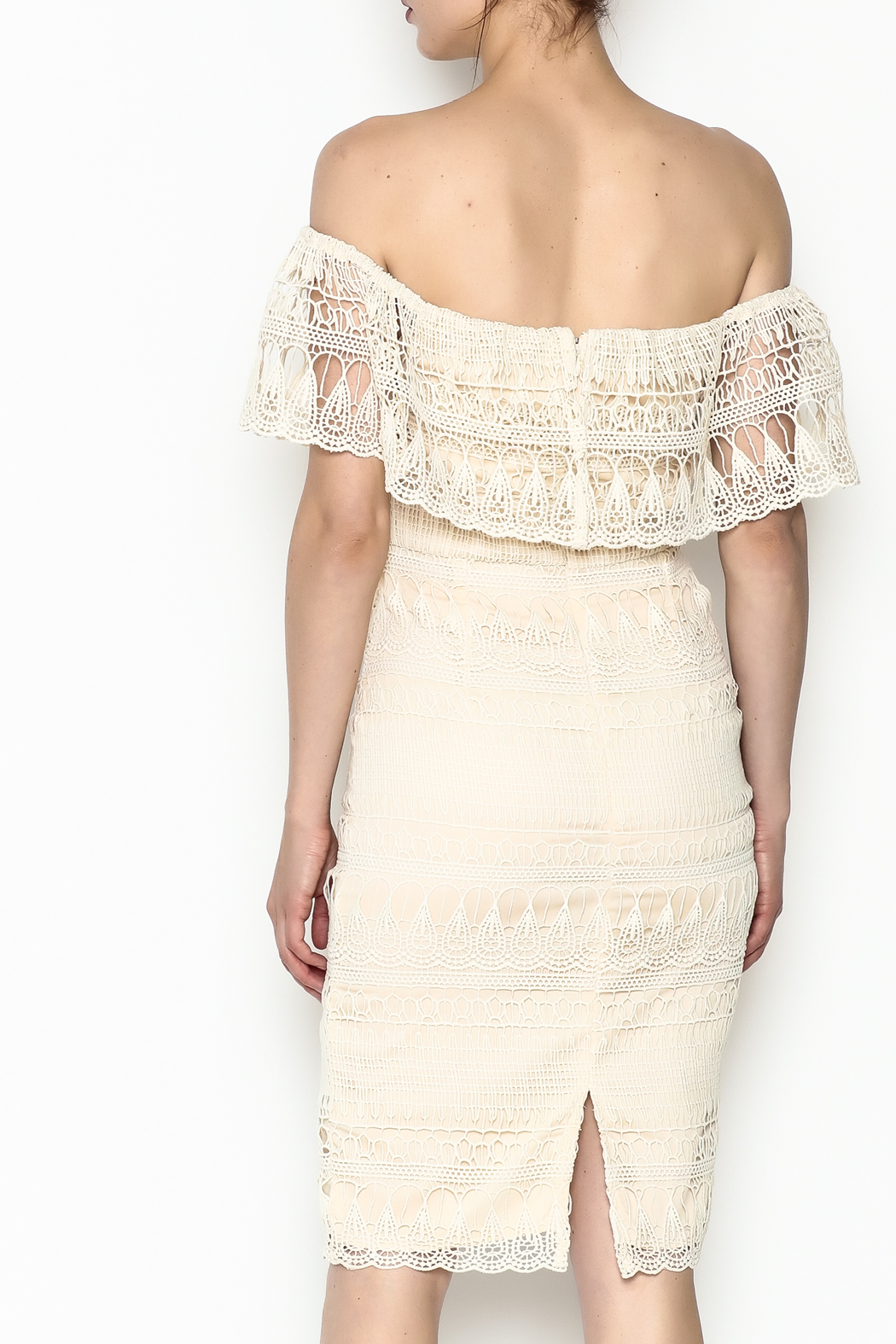 Champagne & Strawberry Cream Lace Dress - Back Cropped Image