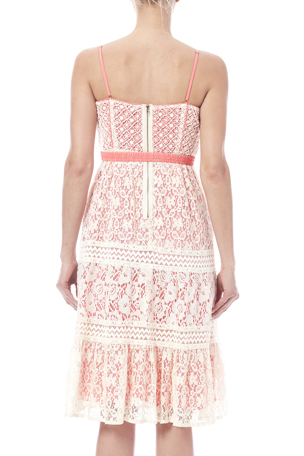 Champagne & Strawberry Lacy Coral Dress - Back Cropped Image
