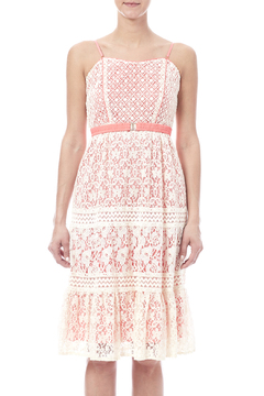 Champagne & Strawberry Lacy Coral Dress - Product List Image