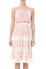 Champagne & Strawberry Lacy Coral Dress - Side cropped