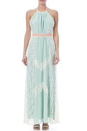 Champagne & Strawberry Mint Maxi Dress - Front cropped