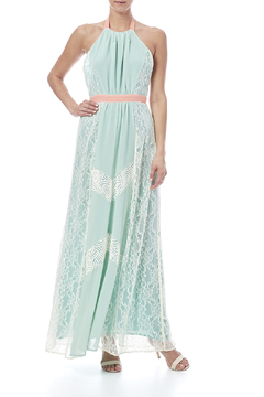 Champagne & Strawberry Mint Maxi Dress - Product List Image