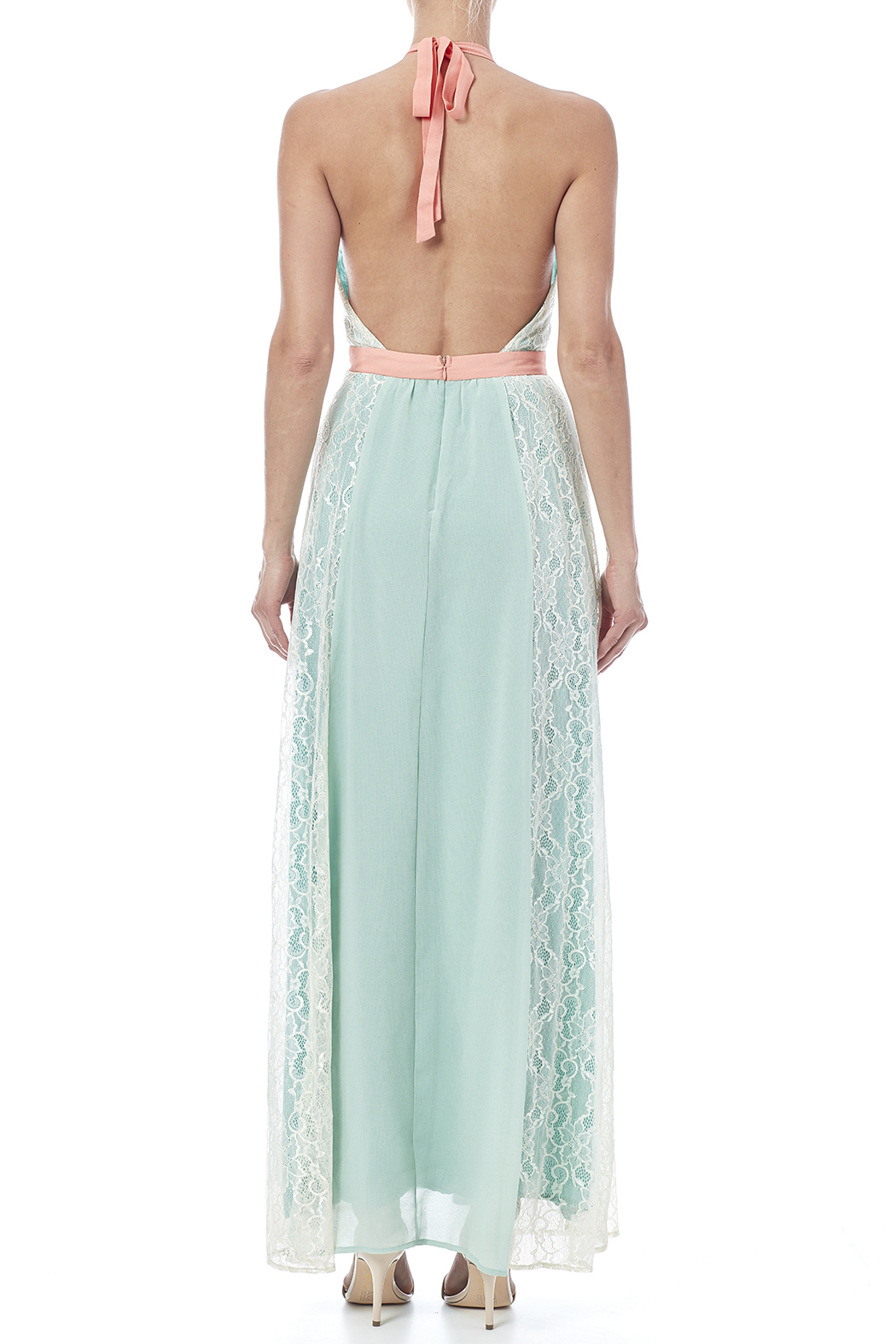 Champagne & Strawberry Mint Maxi Dress - Back Cropped Image