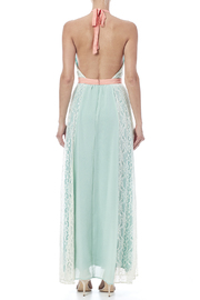 Champagne & Strawberry Mint Maxi Dress - Back cropped