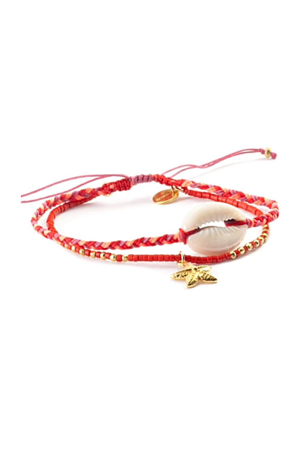 Chan Luu Starfish Shell Bracelet - Front Cropped Image