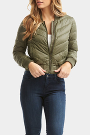 Tart Collections Chandler Puffer Bomber - Back cropped