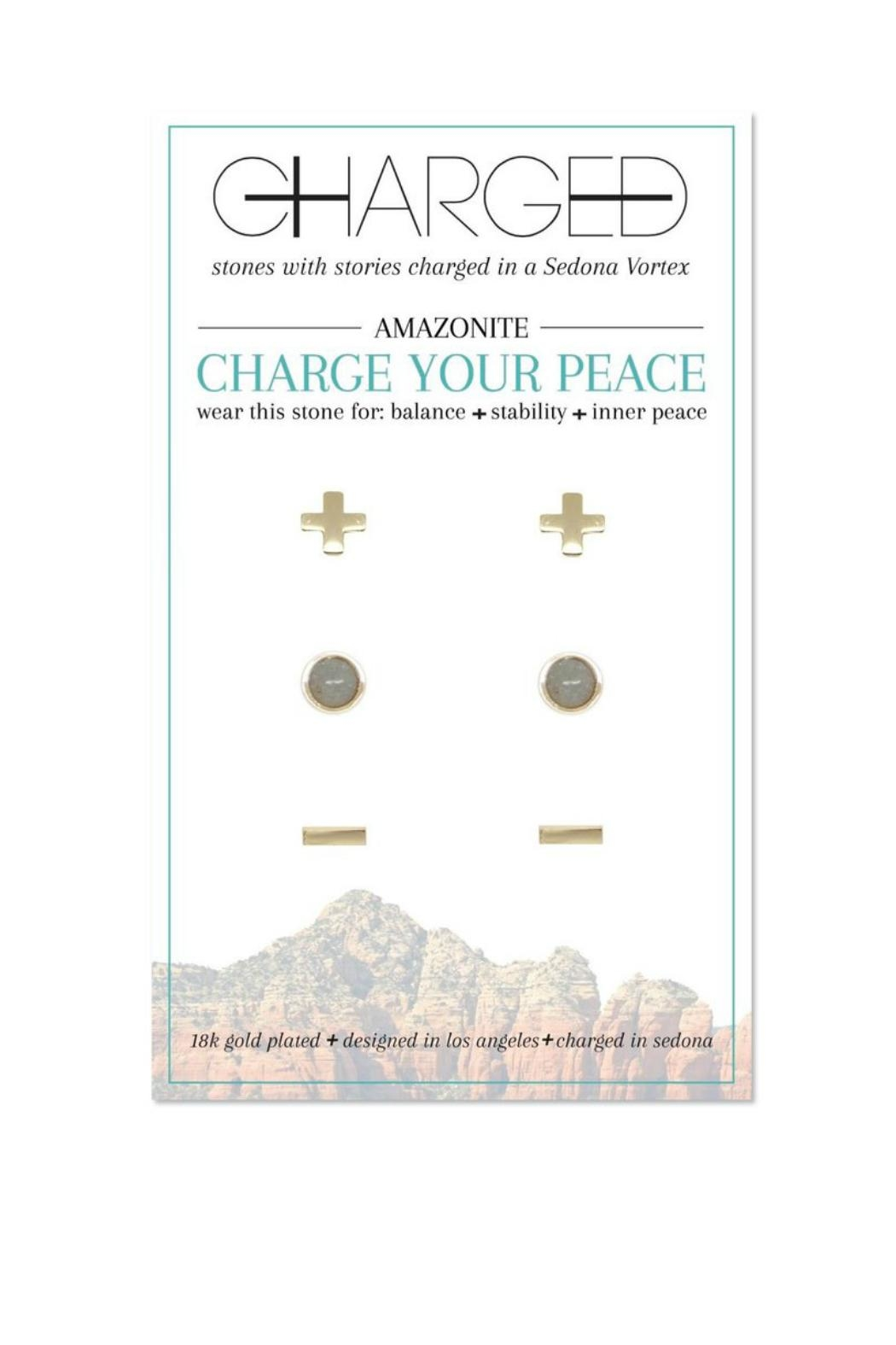 CHARGED Amazonite Earring Set - Front Cropped Image