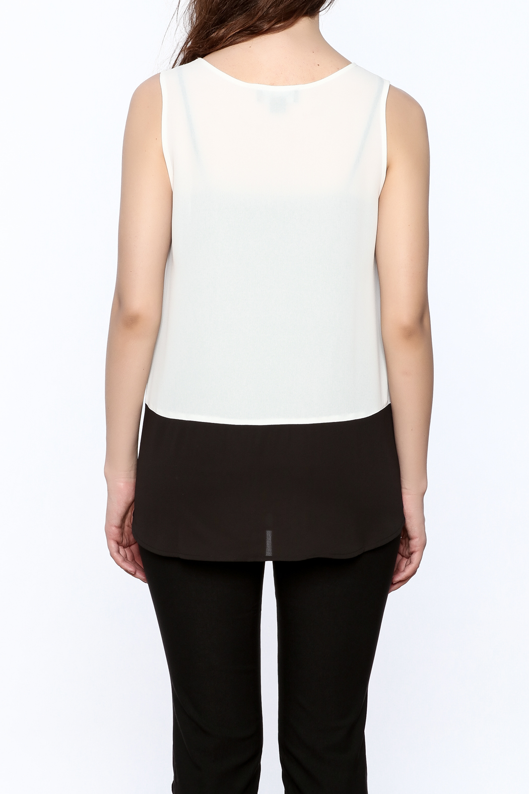 Charlie Paige Loose Fit Chiffon Top - Back Cropped Image