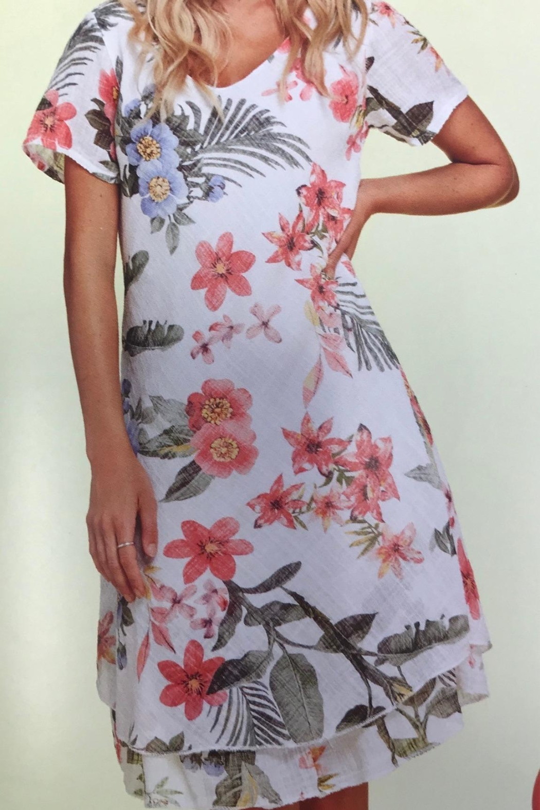 Charlie B. Lined Floral Fun Dress - Main Image