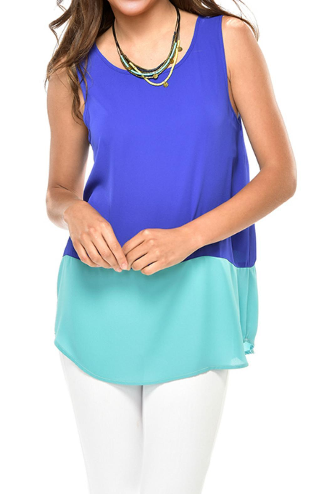 Charlie Paige Color Block Chiffon Top - Front Cropped Image