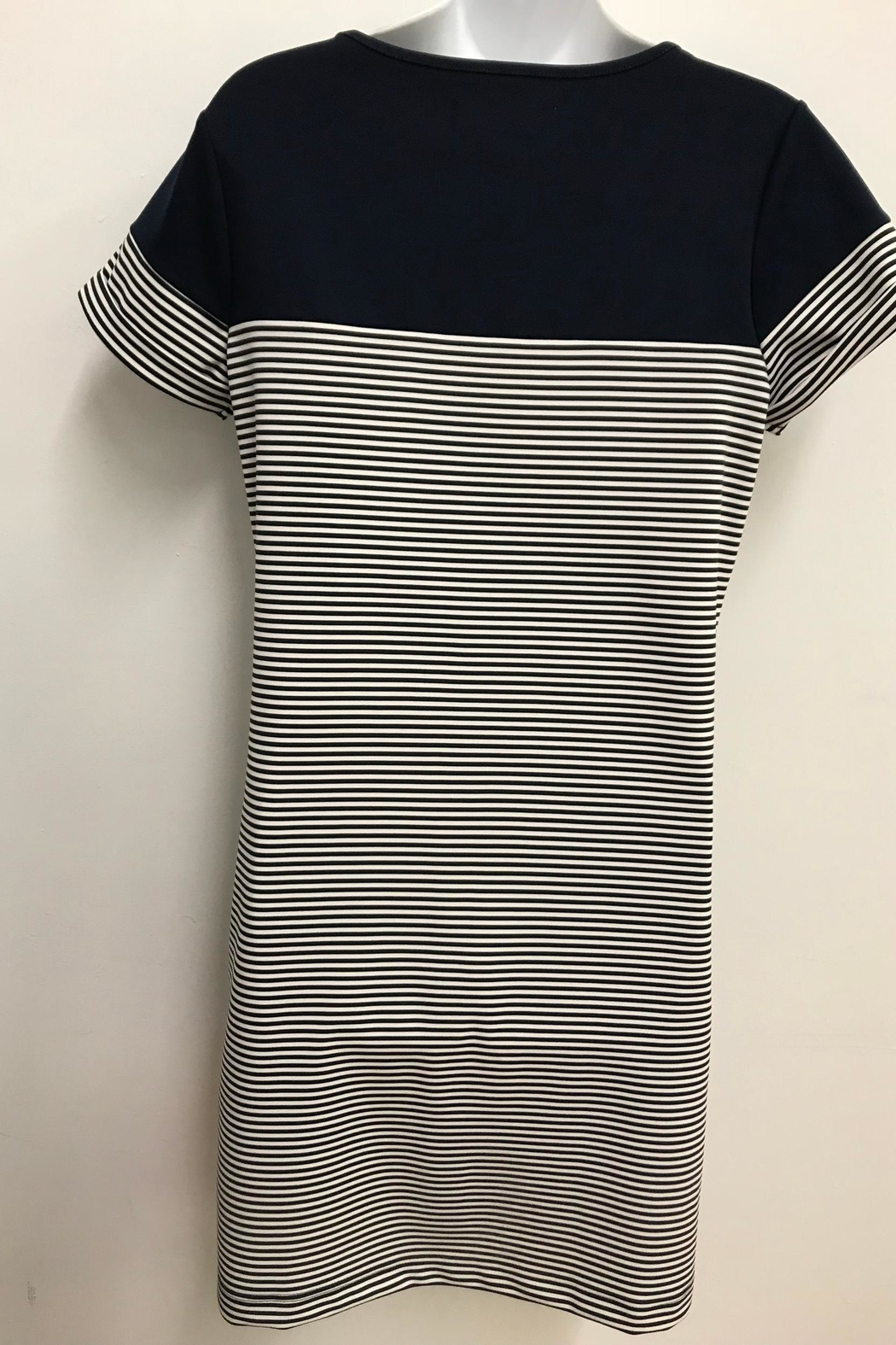 Charlie Paige Navy Nautical Dress - Front Full Image