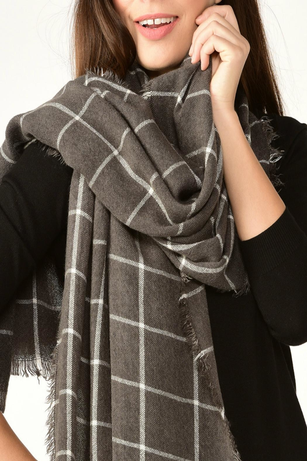 Charlie Paige Window Pane Scarf - Front Cropped Image