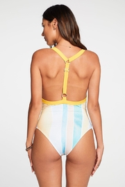 Chaser Painterly Stripes One-Piece - Front full body