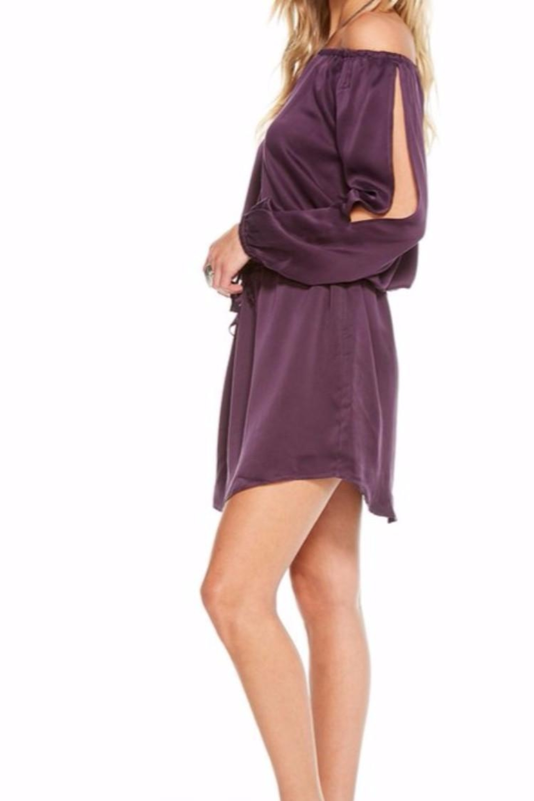 Chaser Silk Charmeuse Dress - Side Cropped Image