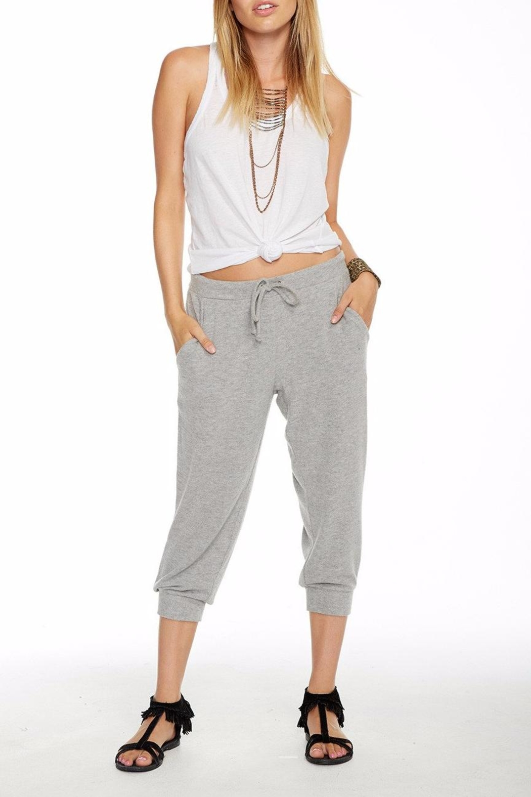 Chaser Slouchy Cropped Pant - Back Cropped Image