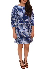 Britt Ryan Chatham Shift Dress - Product Mini Image