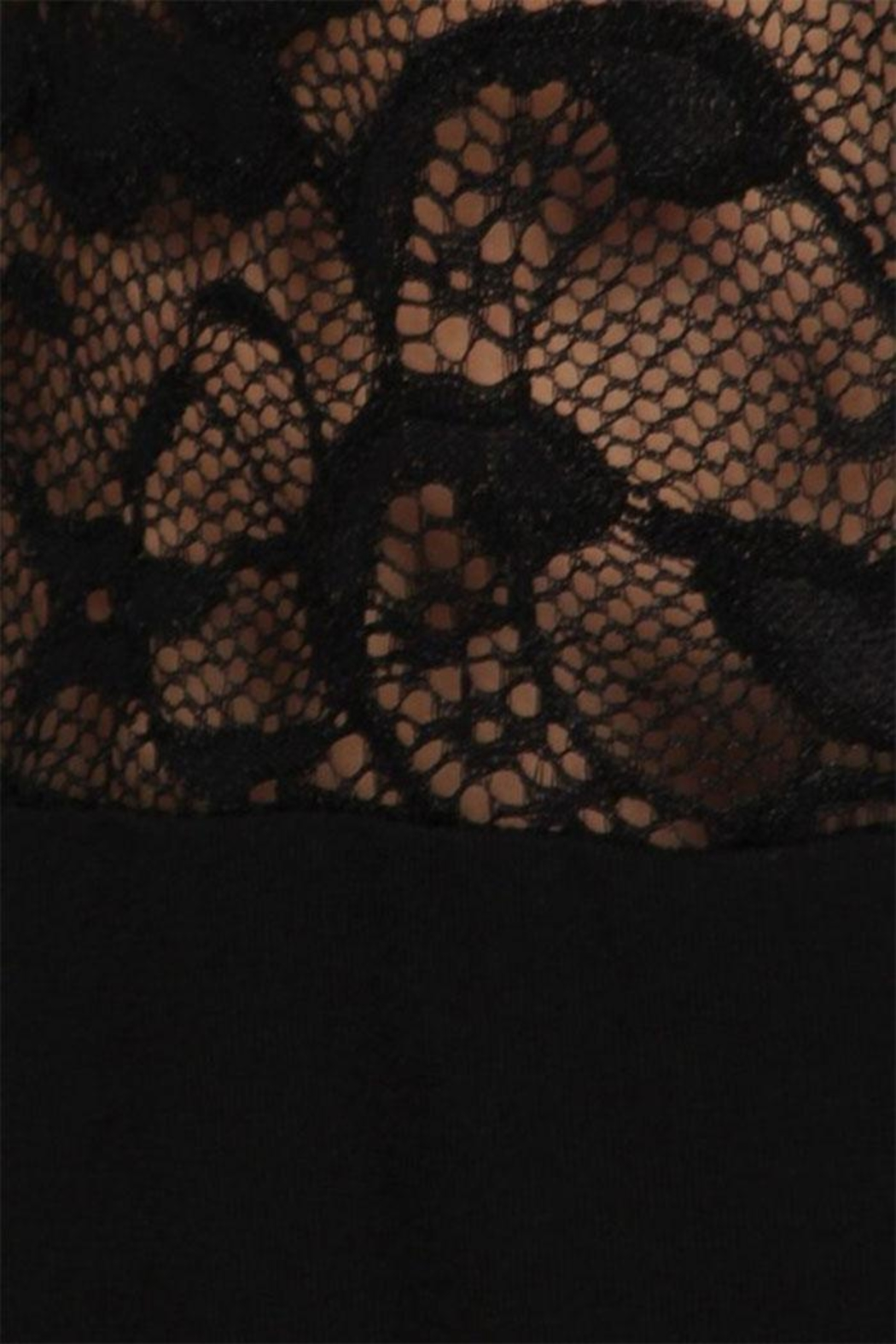 Chatoyant  Lace Inset Bell Pants - Front Full Image