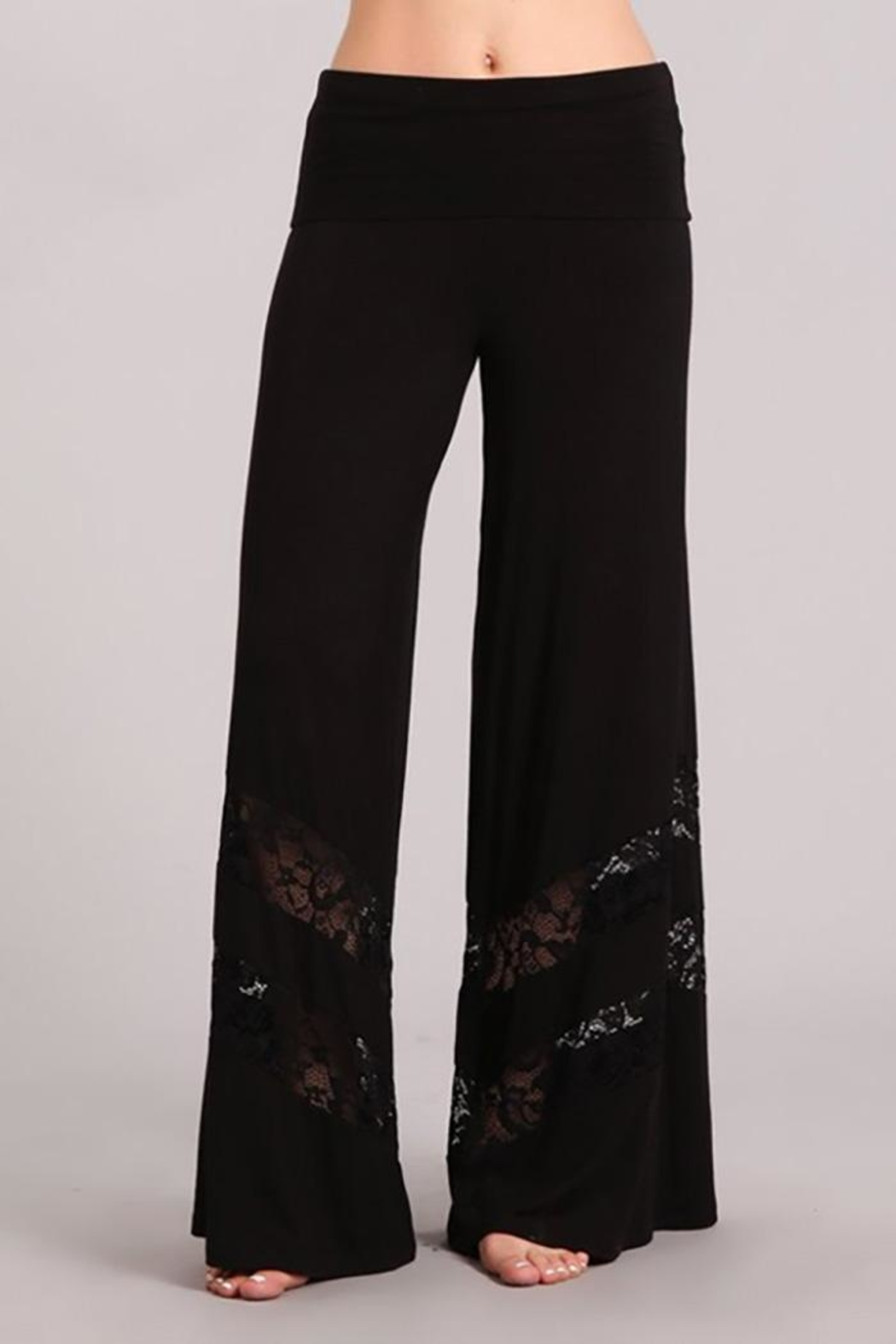 Chatoyant  Lace Inset Palazzo-Pants - Front Cropped Image
