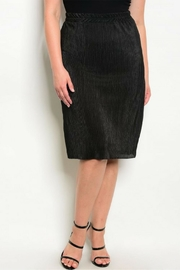 Check it Out Plus Black Skirt - Front cropped