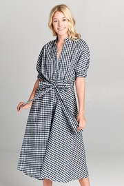 Racine Checker Maxi Dress - Product Mini Image