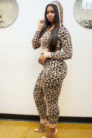 36 POINT 5 CHEETAH - Front full body