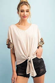eesome Cheetah Trim V Neck Top - Product Mini Image