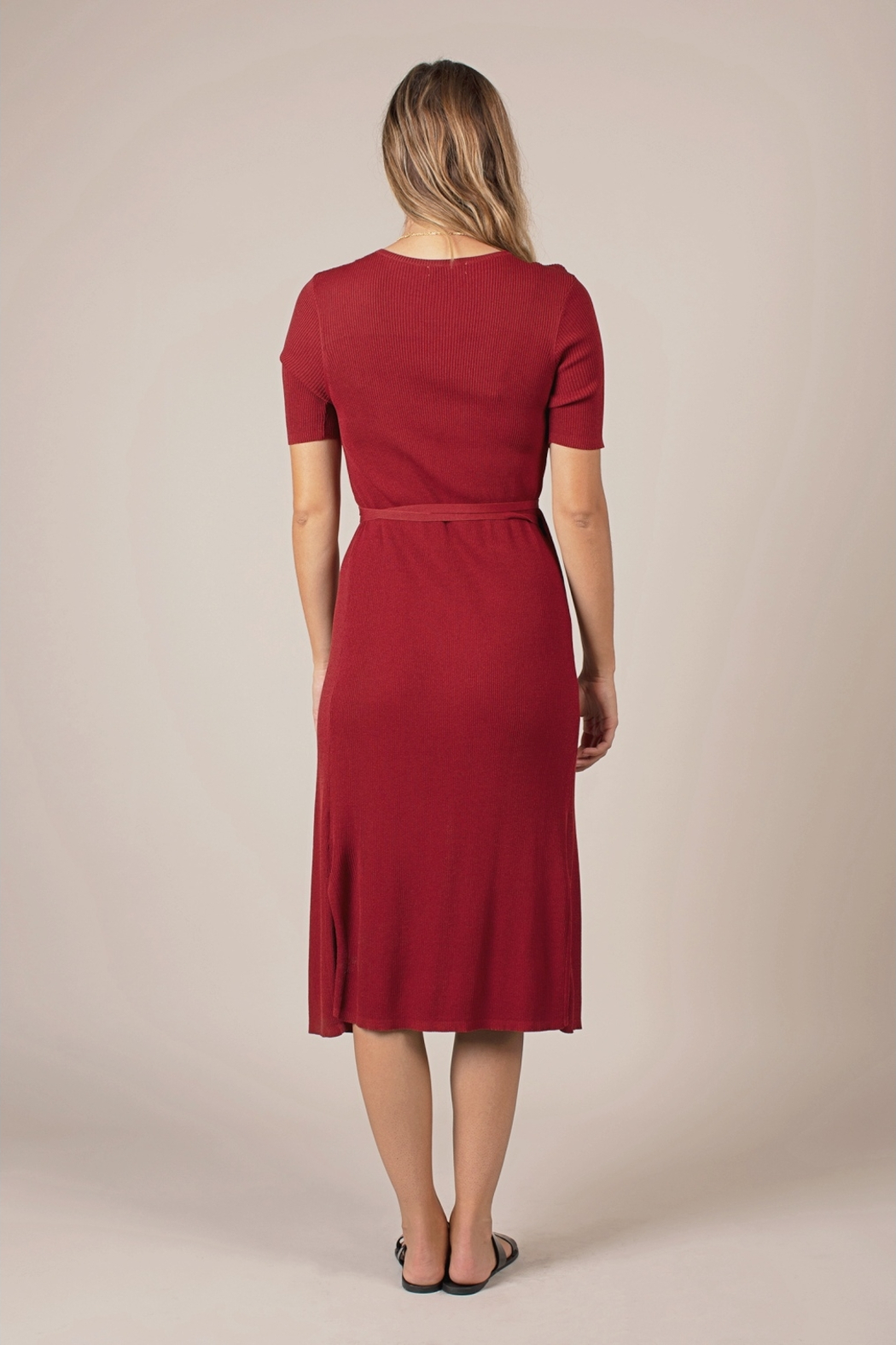 All Row Chelsea Dress - Side Cropped Image