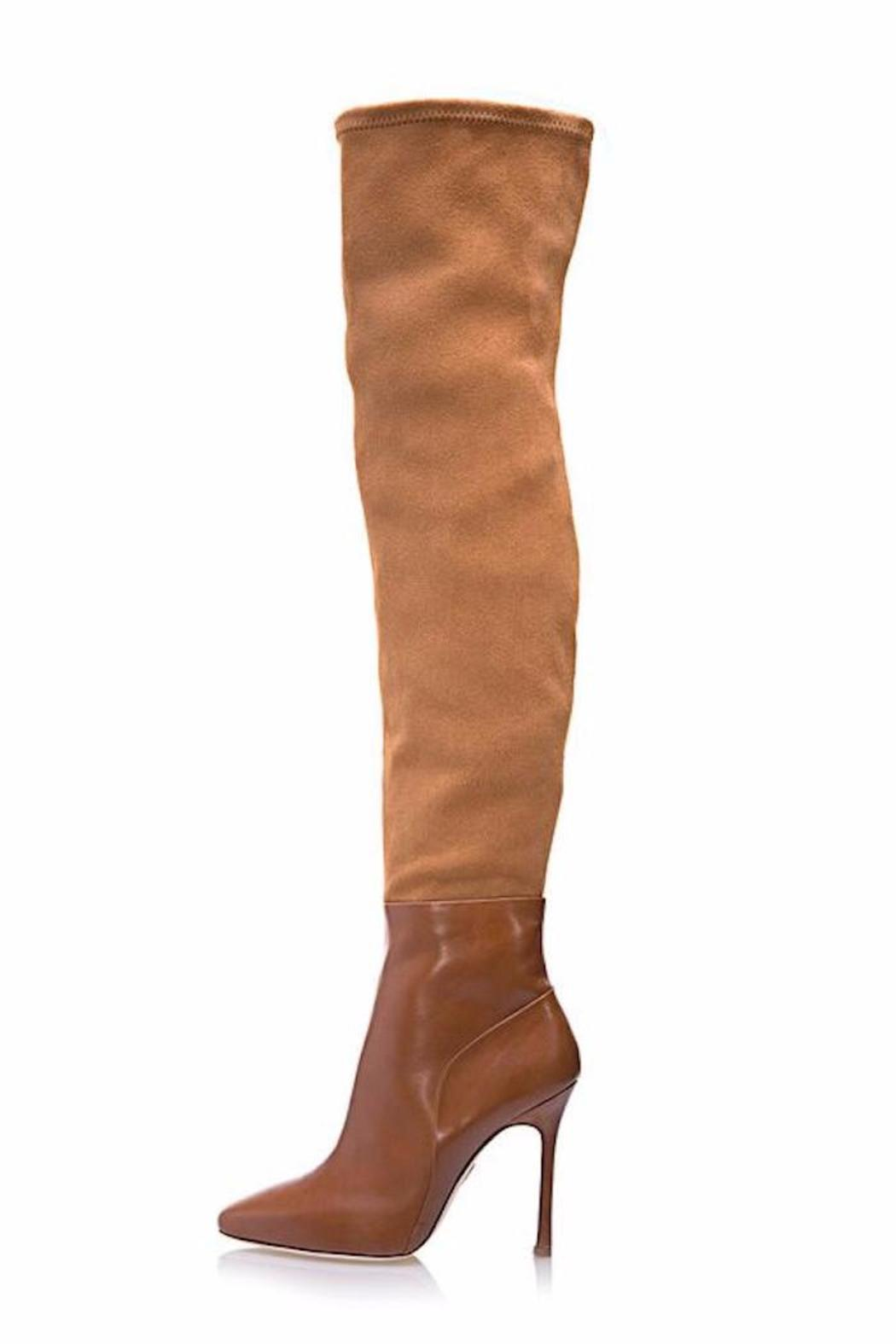 Chelsea Paris Thigh Boot - Front Cropped Image