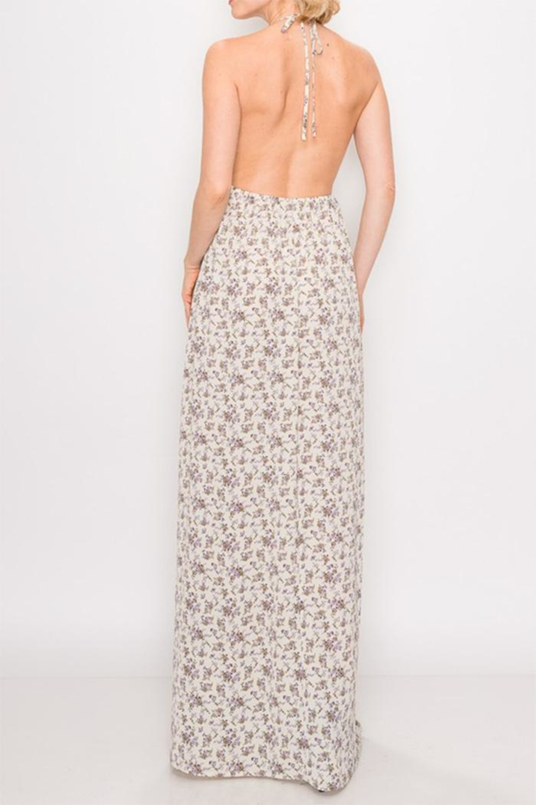 Cherie Halter Maxi Dress - Side Cropped Image