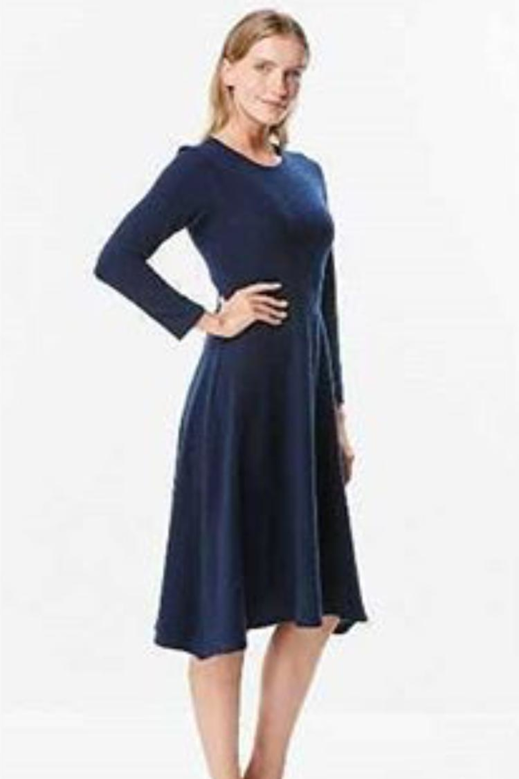 Chi Chi Fit & Flare Dress - Front Cropped Image