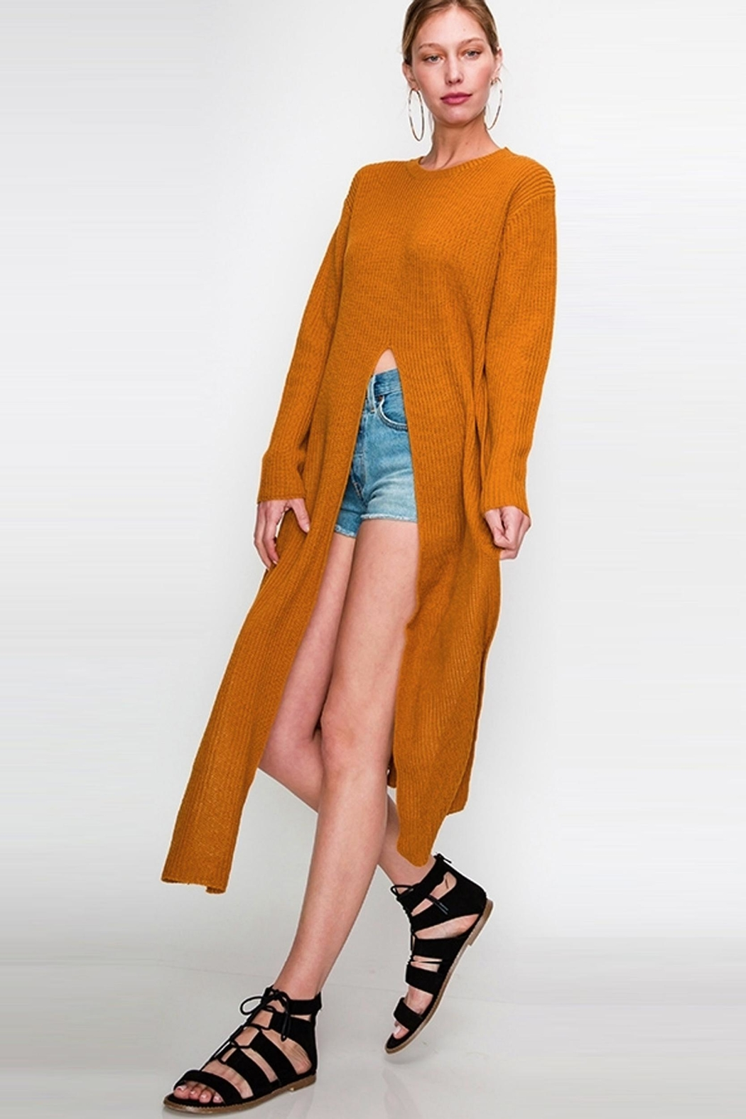 Bonded Chic Tie Sweater - Front Cropped Image