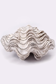 Chic and Shore Things Faux Clam Shell - Product Mini Image