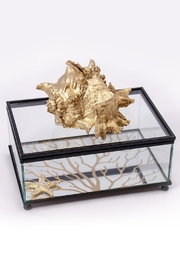 Chic and Shore Things Gold Glass Coral Box - Product Mini Image