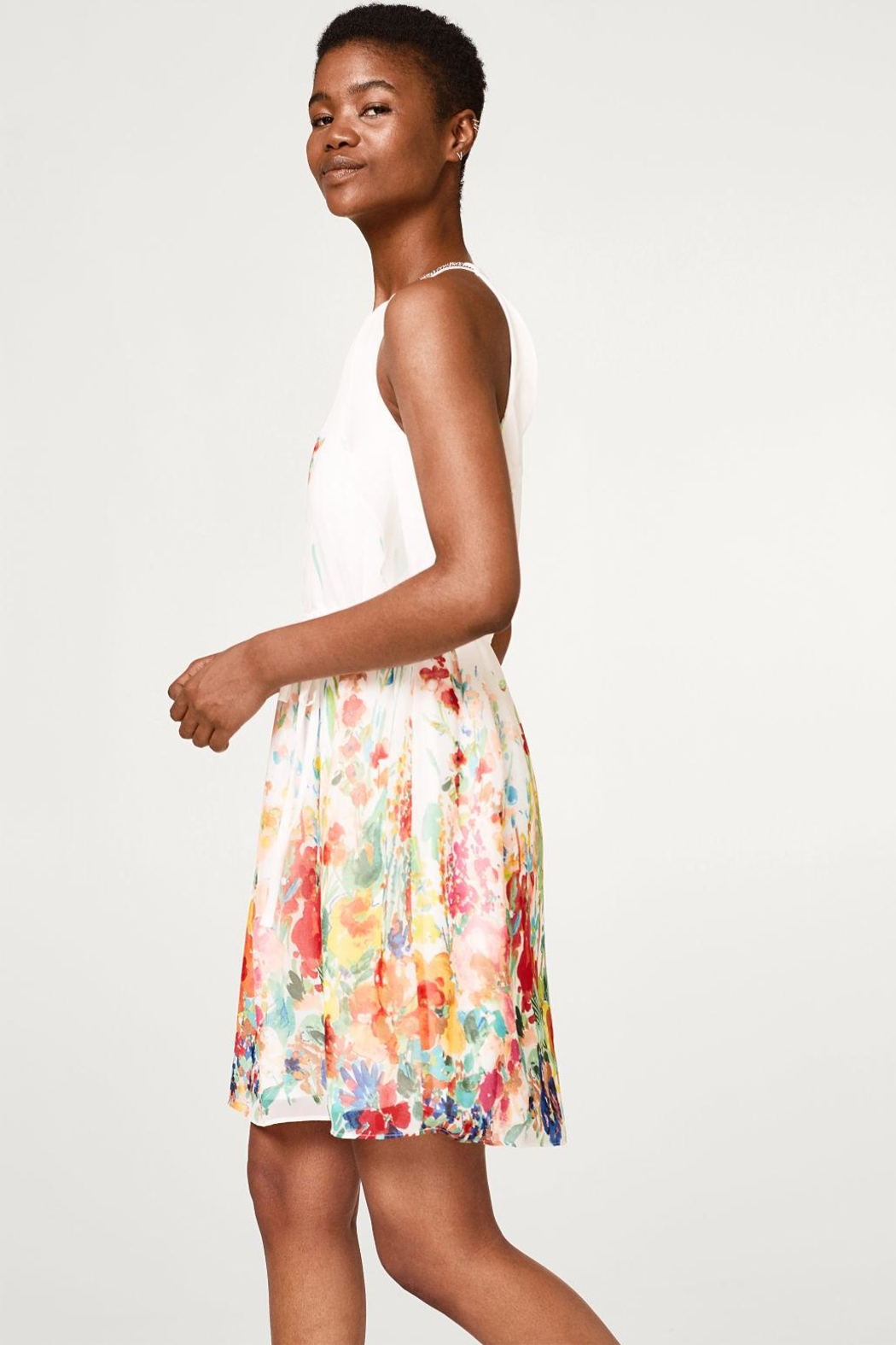 Esprit Chiffon Dress - Back Cropped Image