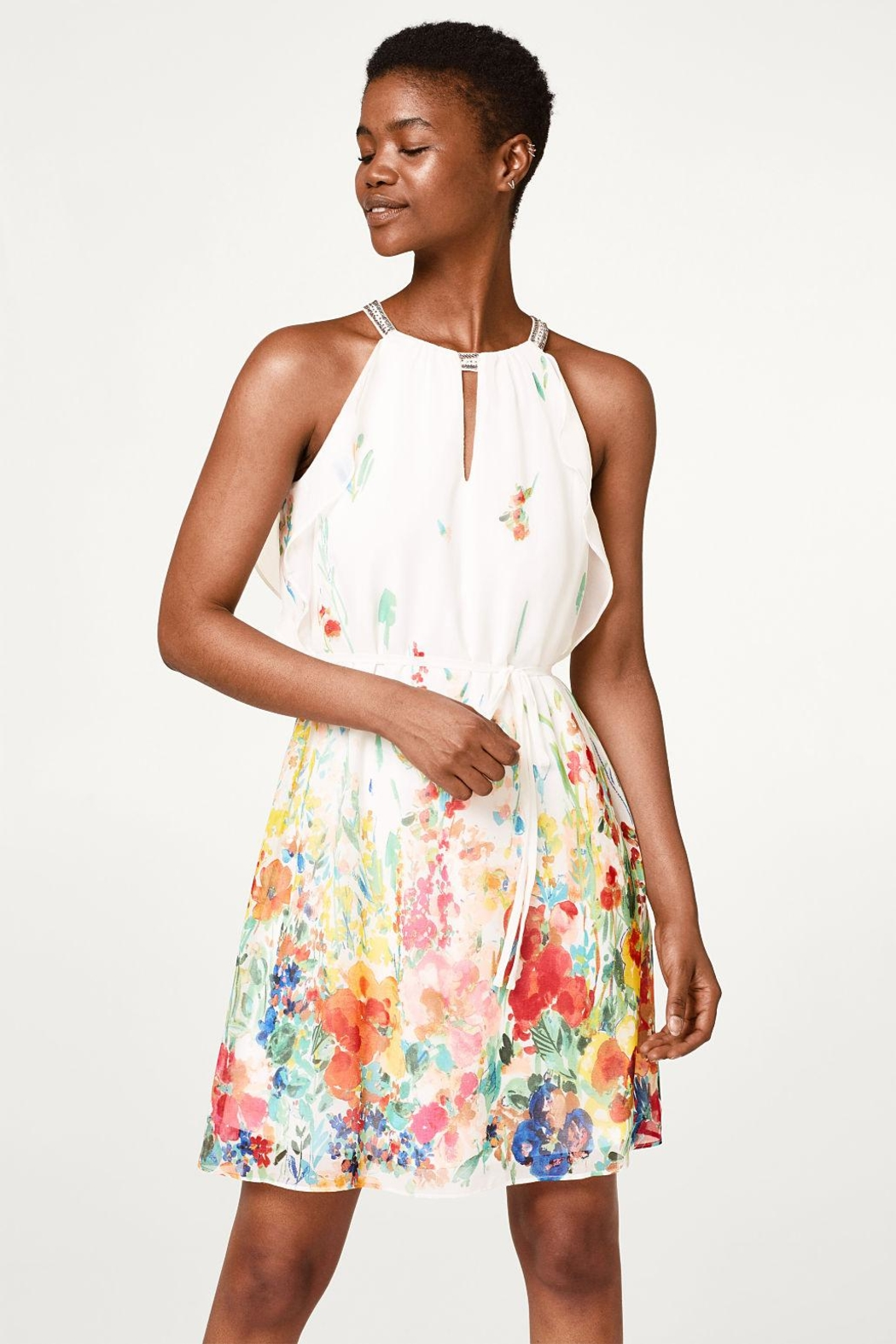 Esprit Chiffon Dress - Main Image