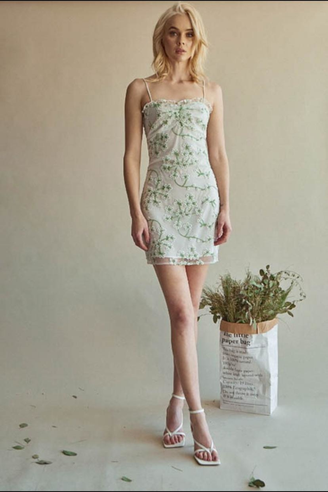 Chikas Floral Embroidered Dress - Main Image