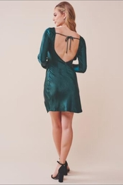 Chikas Forest Green Dress - Back cropped
